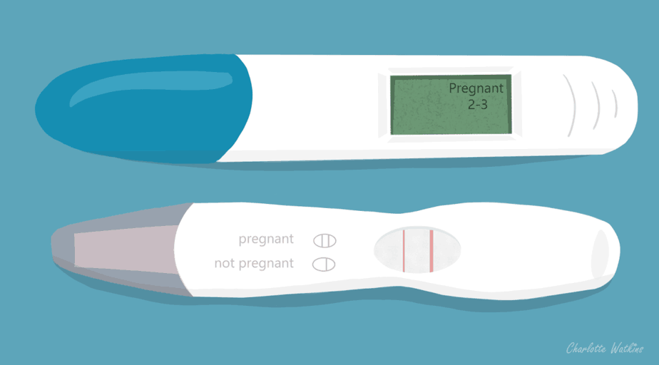 Week 4 - pregnancy tests - illustration by Charlottewatkins.co.uk