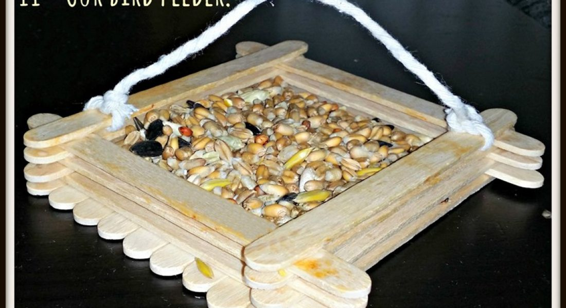 Weekend Box - Bird Feeder