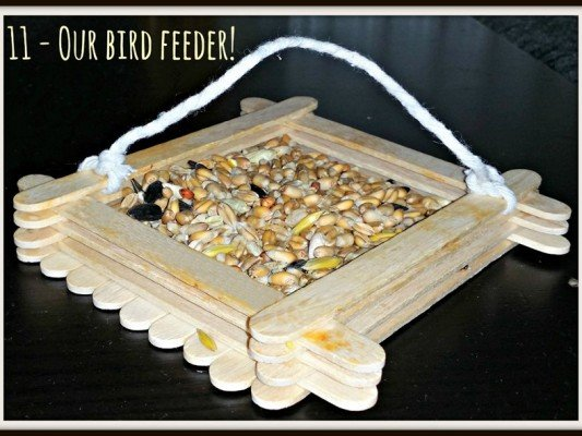 Weekend Box - Bird Feeder