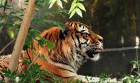 zoo - motherhooddiaries.com