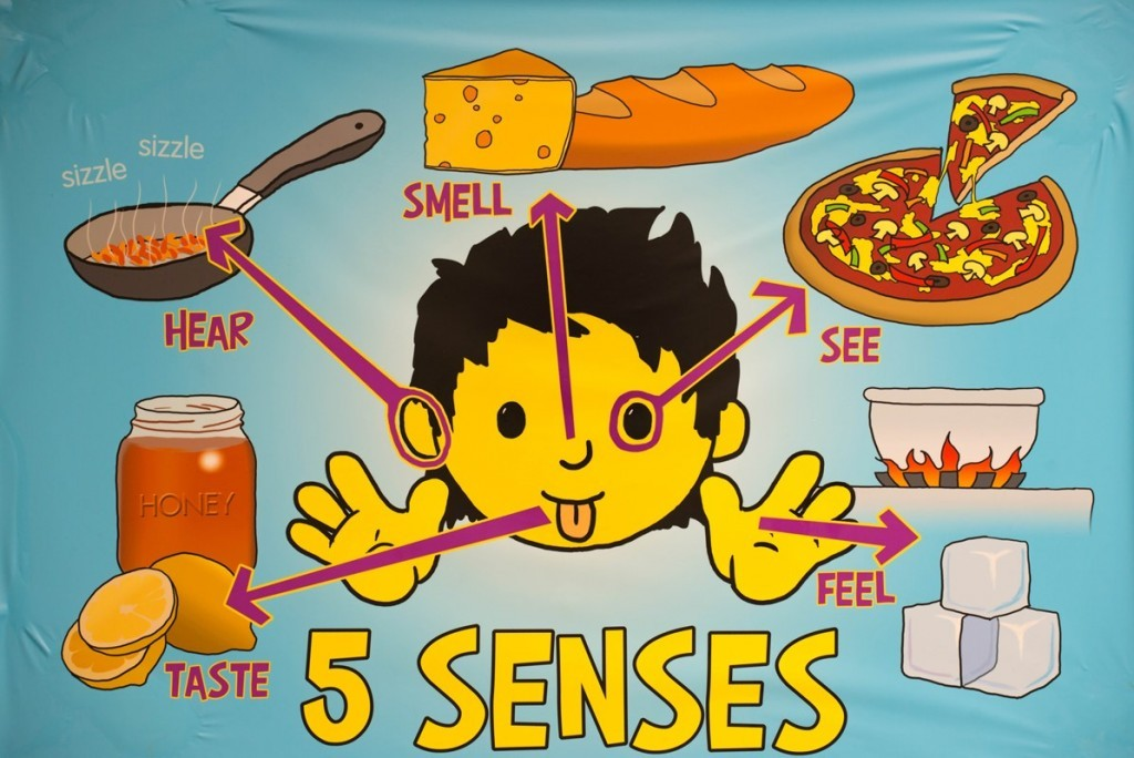 5 senses poster - Kids Cookery School - motherhooddiaries.com