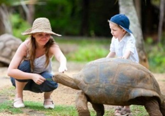 Family-friendly resorts - Mauritius