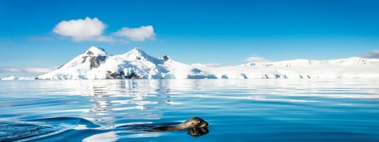 10 reasons why you should go to the Antarctica this year - oceanwide expeditions - motherhooddiaries