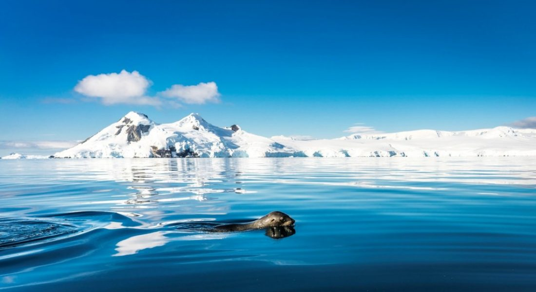 10 reasons to visit the antarctica - motherhooddiaries