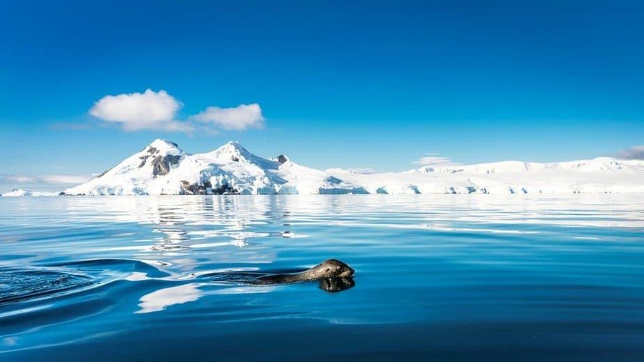 © Dietmar Denger; Oceanwide Expeditions - motherhooddiaries