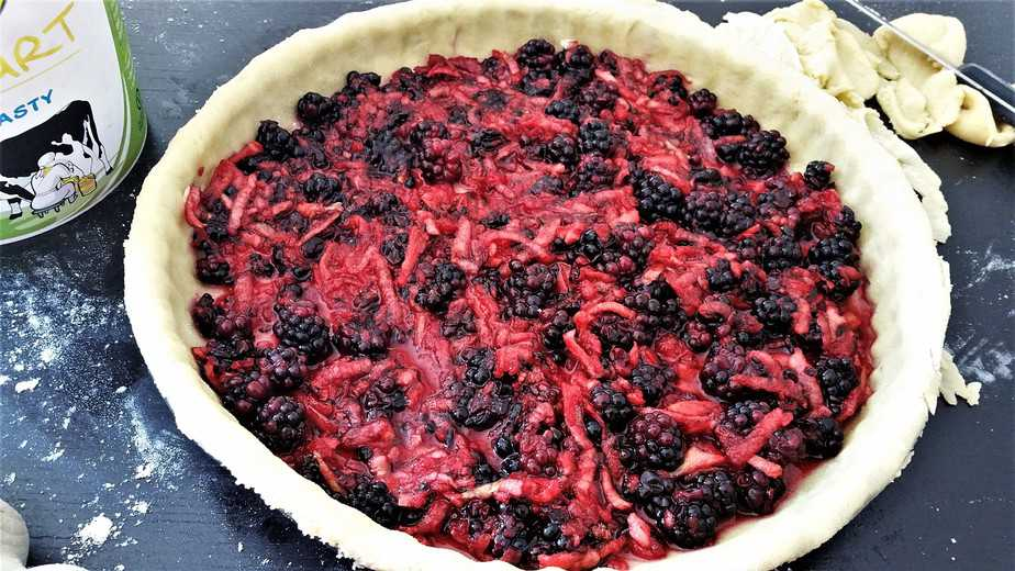 Blackberry pie with apple filling - motherhooddiaries