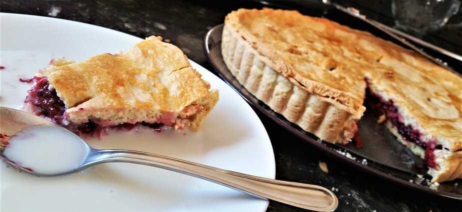 Blackberry Pie Recipe - motherhooddiaries