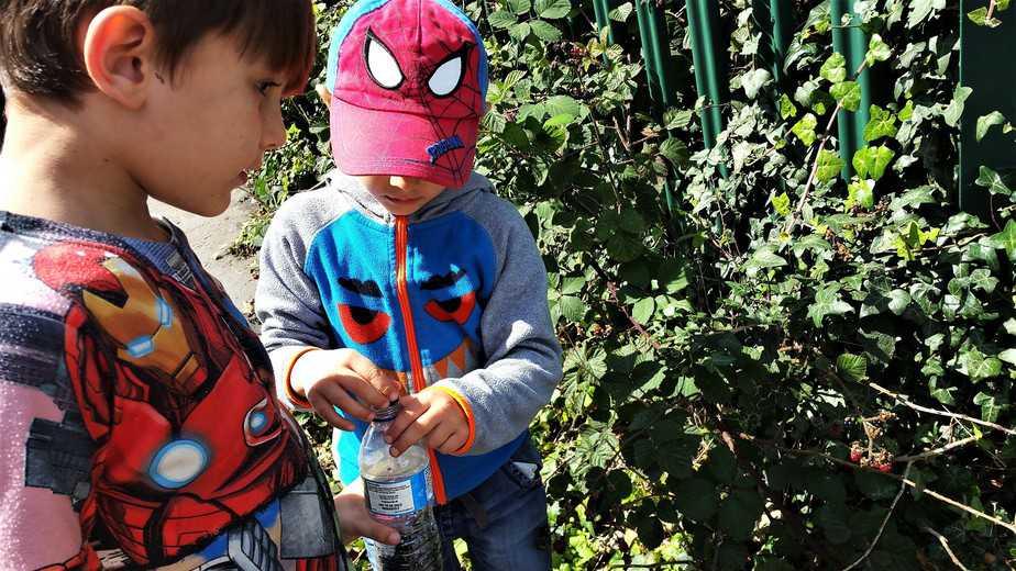Make the most of blackberry season - motherhooddiaries