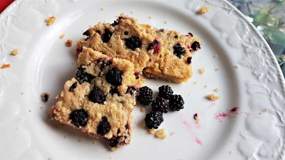 Almond and Blackberry Biscuit Squares Recipe - motherhooddiaries