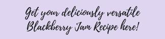 Blackberry jam recipe - motherhooddiaries