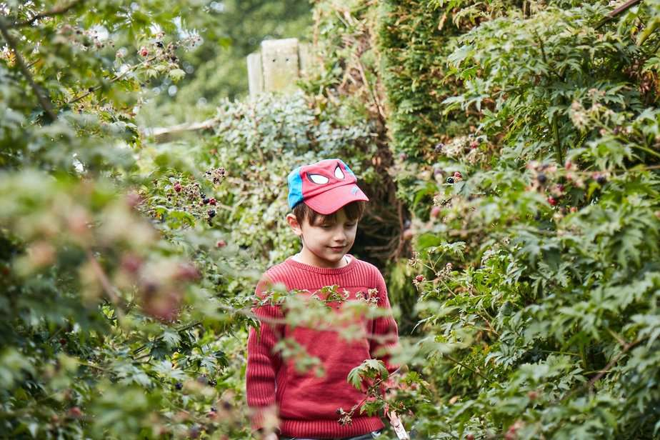 Aron immersed in the blackberry fields - motherhooddiaries