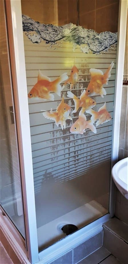Goldfish Printed Window Film  from Purlfrost
