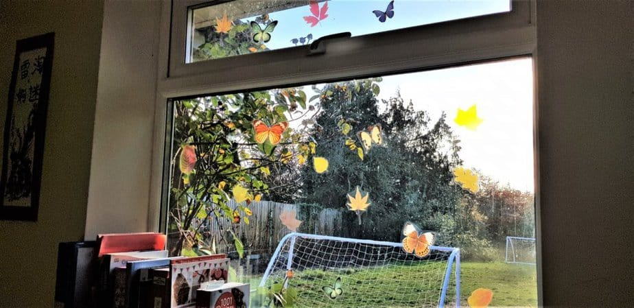 Leaves window stickers or butterfly window stickers from Purlfrost