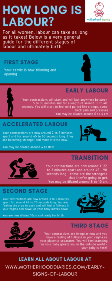 General stages of labour