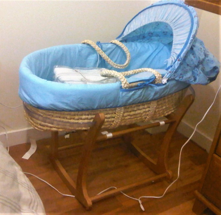 Old moses basket for the boys