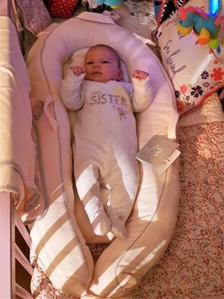 Kally Sleep Pink Baby Nest