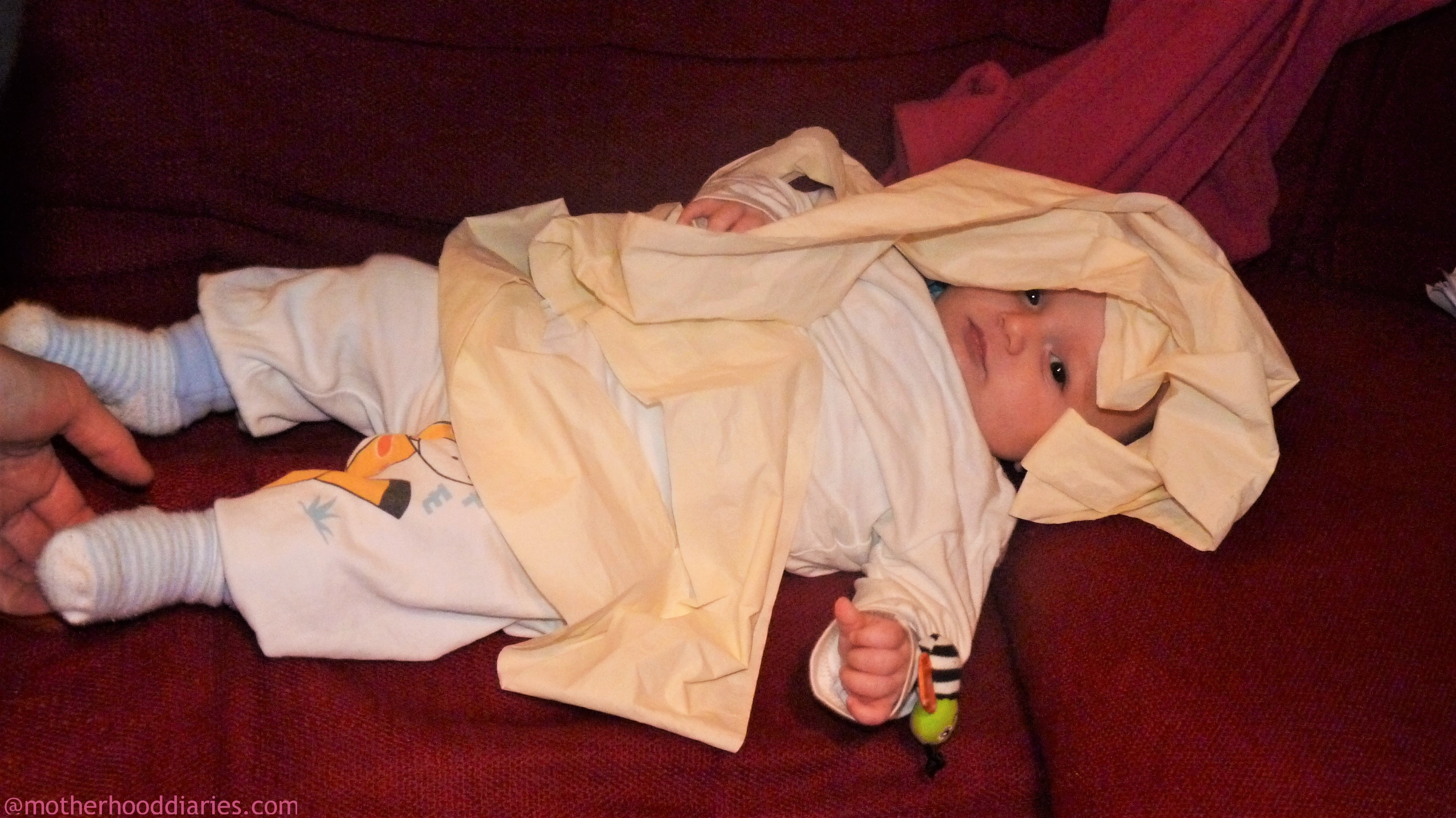 16 weeks old - I need to get some sleep!